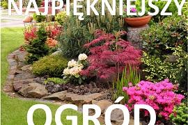 Konkurs na najpiękniejszy ogród lub balkon w gminie Świerklaniec