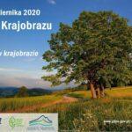 Dzień Krajobrazu 2020 – zaproszenie na spacer