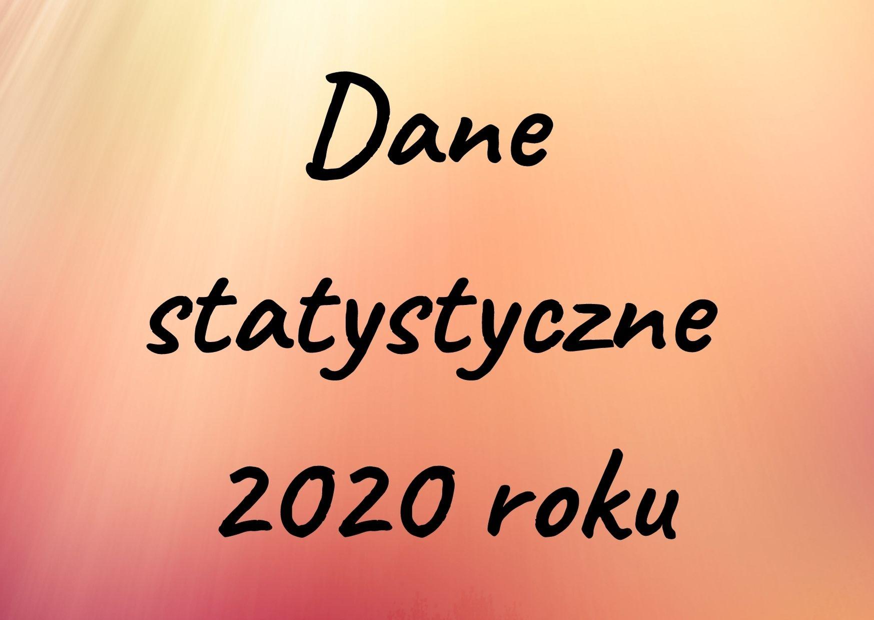 Dane statystyczne 2020 roku