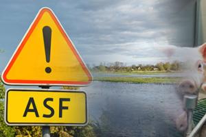 Dofinansowanie na inwestycje chroniące przed ASF lub powodzią