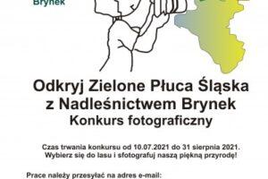 """""""Odkryj Zielone Płuca Śląska"""" – konkurs fotograficzny"""